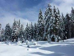 Some winter, yesterday
